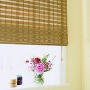 Venetian Blinds - EasternGlory_close